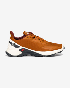 Salomon Alphacross Blast Outdoor obuv